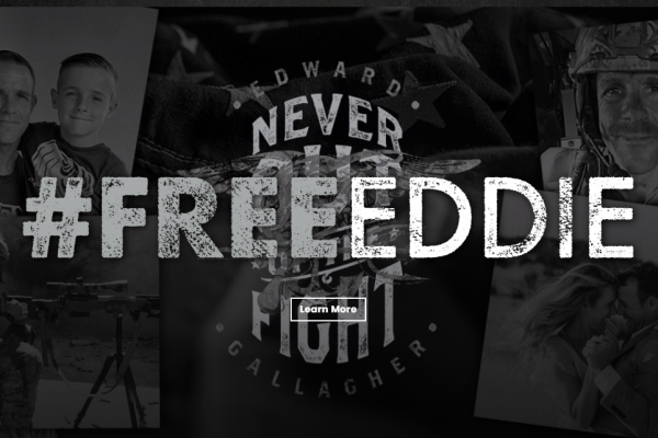 FreeEddie - Never Out of the Fight